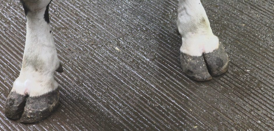 Dichte vloeren stal opruwen (2)